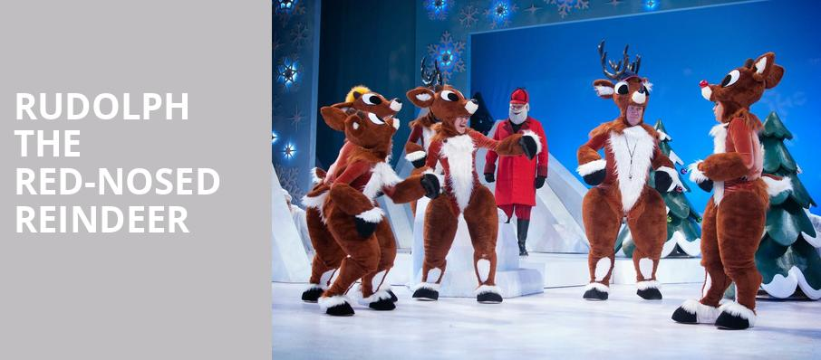 Rudolph the Red Nosed Reindeer, Niswonger Performing Arts Center Greeneville, Knoxville