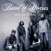 Band of Horses, The Mill Mine, Knoxville